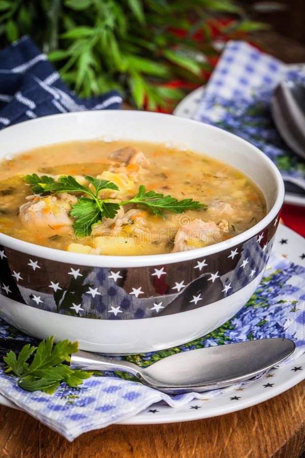 Soup with barley and chicken gizzards. Traditional soup with barley and chicken gizzards royalty free stock image
