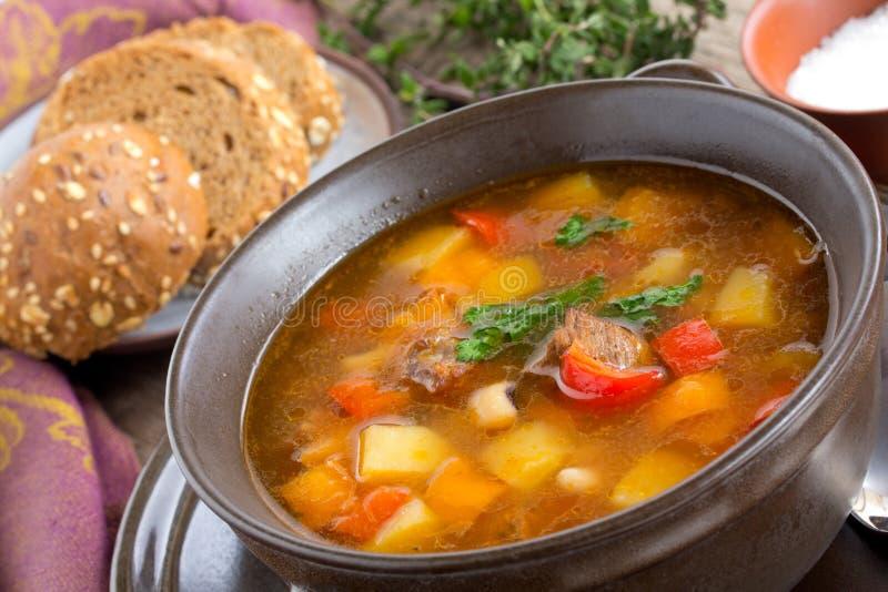 Soup med bönor. arkivfoto
