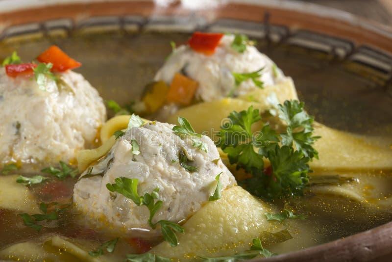 Soup med meatballs royaltyfri bild