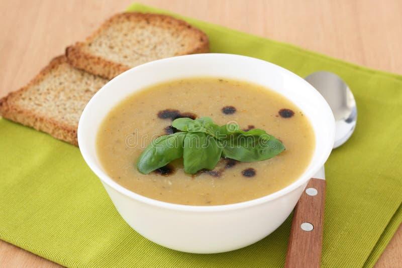 Download Soup rostar grönsaken fotografering för bildbyråer. Bild av nytt - 19784925
