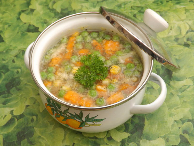 Soup of vegetables. A soup of mixed vegetables stock photography