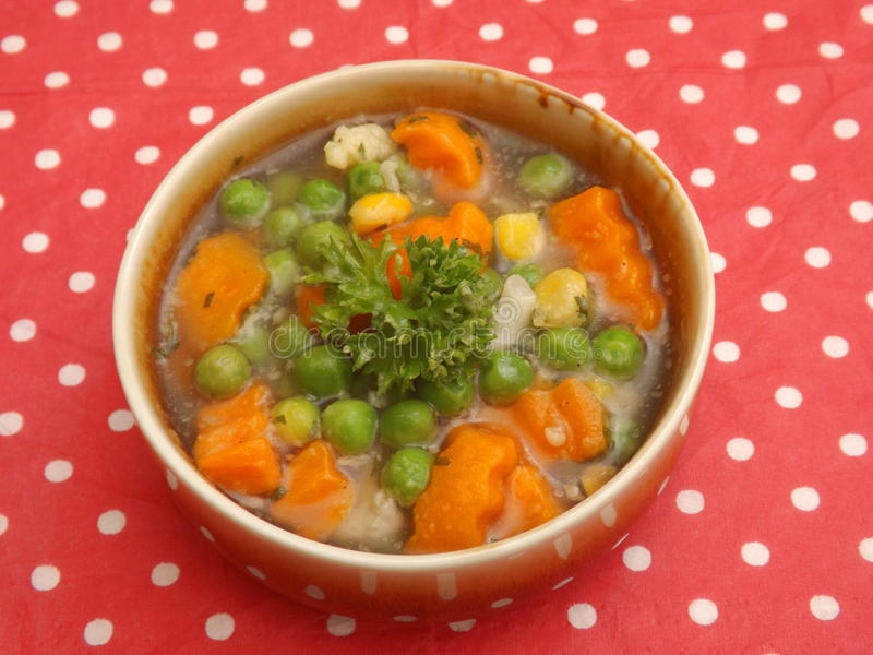 Soup of vegetables. A soup of mixed vegetables royalty free stock photos