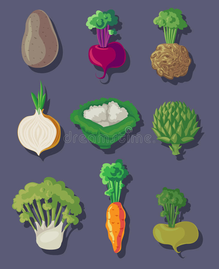 Download Soup vegetables set stock vector. Image of carrot, onion - 34109294