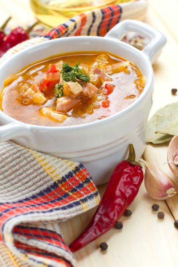 Soupe à betterave dans le bac blanc image stock