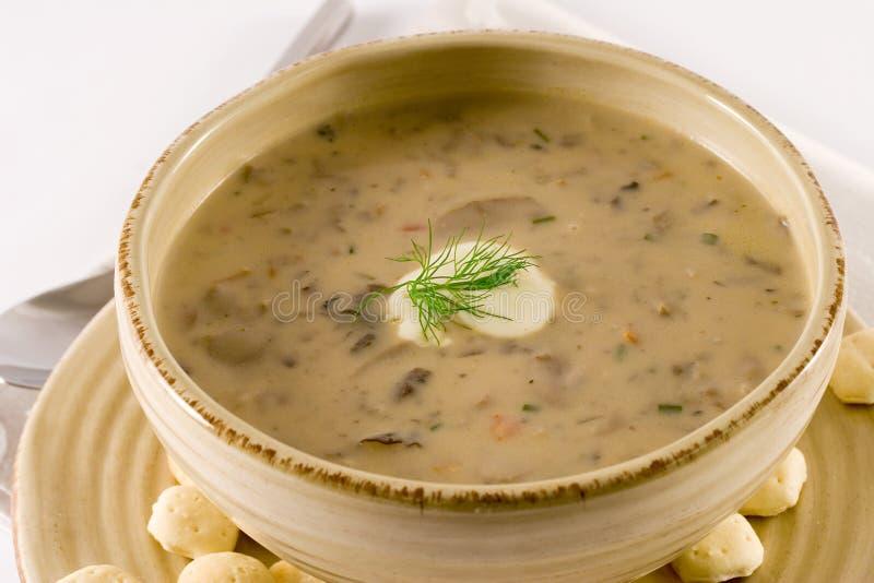 Soupe à champignons photos libres de droits