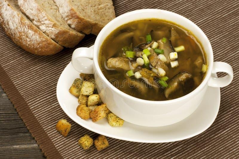 Soupe à champignons image stock