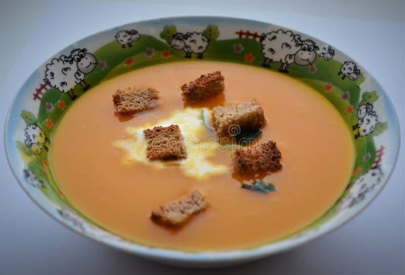 Soupe à champignons avec de la purée de pommes de terre photographie stock