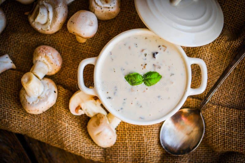 Soupe à champignons dans la cuvette blanche photo stock
