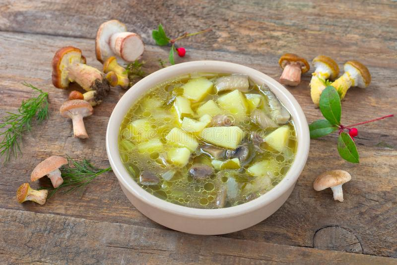 Soupe à champignons de miel images libres de droits