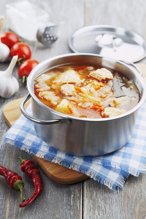 Soupe à chou avec de la viande photographie stock