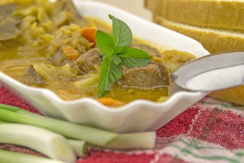 Soupe à chou avec du boeuf images stock