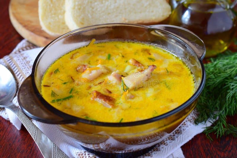 Soupe à fromage avec le poulet fumé, la pomme de terre et la crème photographie stock