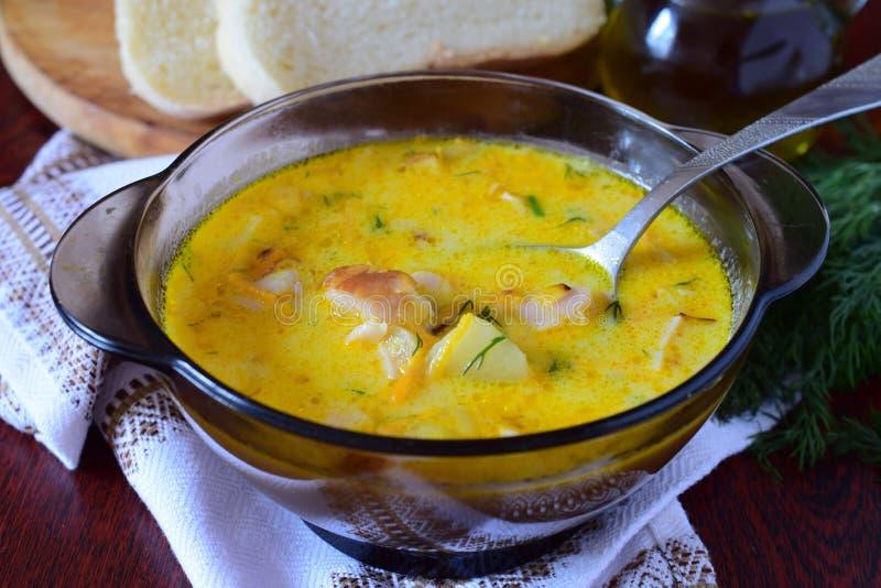 Soupe à fromage avec le poulet fumé, la pomme de terre et la crème images stock