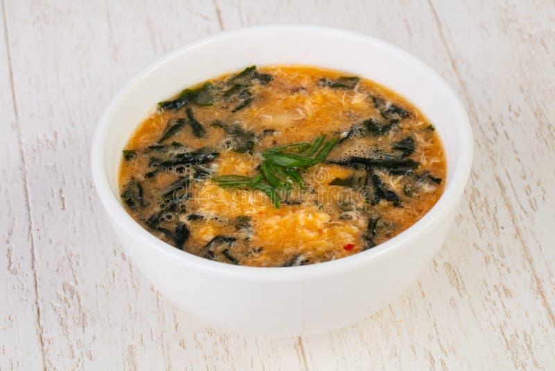 Soupe à Kimchi de Coréen images stock