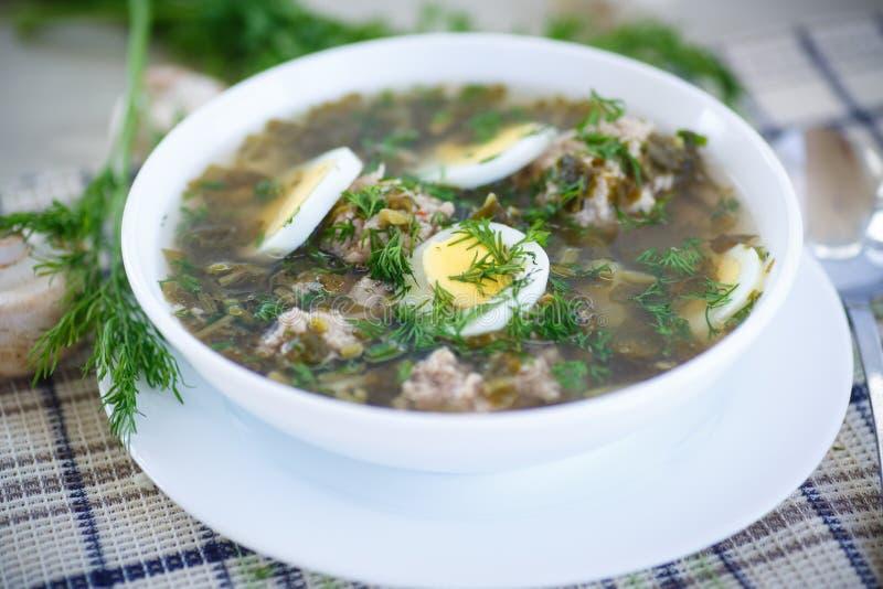 Soupe à oseille avec des boulettes de viande et des oeufs photographie stock
