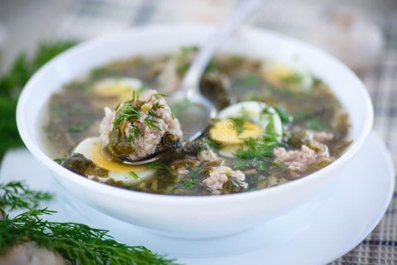 Soupe à oseille avec des boulettes de viande et des oeufs photographie stock libre de droits