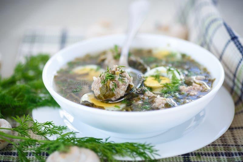 Soupe à oseille avec des boulettes de viande et des oeufs photo stock