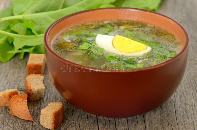 Soupe à oseille avec l'oeuf photographie stock
