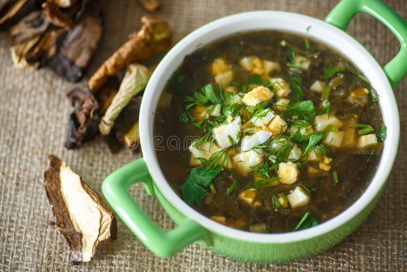 Soupe à oseille avec les champignons secs images stock