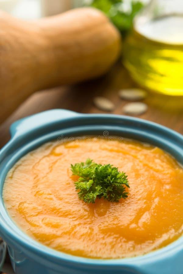 Download Soupe à Potiron Avec Le Pesto Et Les Graines Rôties Image stock - Image du nutrition, gourmet: 76078109