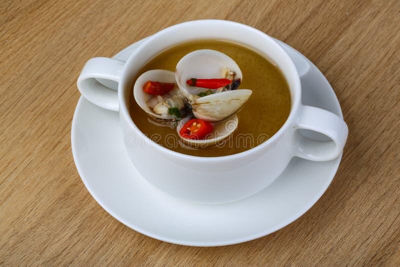 Soupe à Shell photo libre de droits