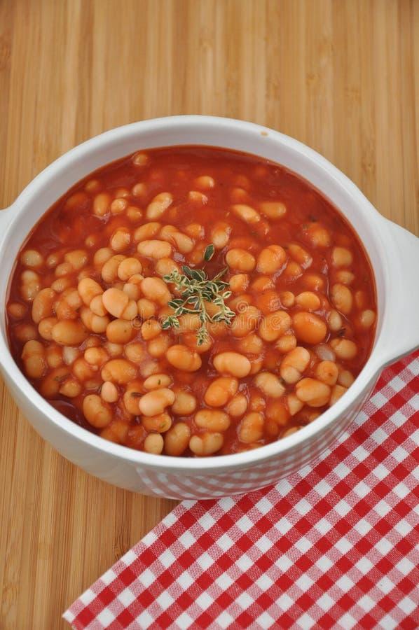 Soupe à tomate avec des haricots photo libre de droits