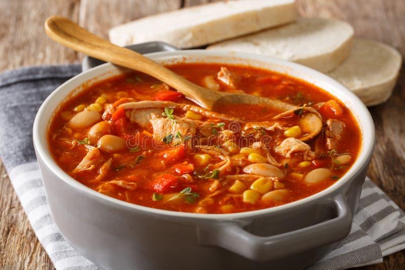 Soupe épaisse délicieuse à ragoût de brunswick avec de la viande tirée, légumes image stock
