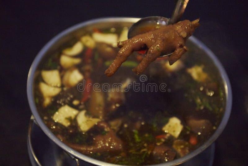 Soupe épicée de style à pieds thaïlandais de poulet images libres de droits