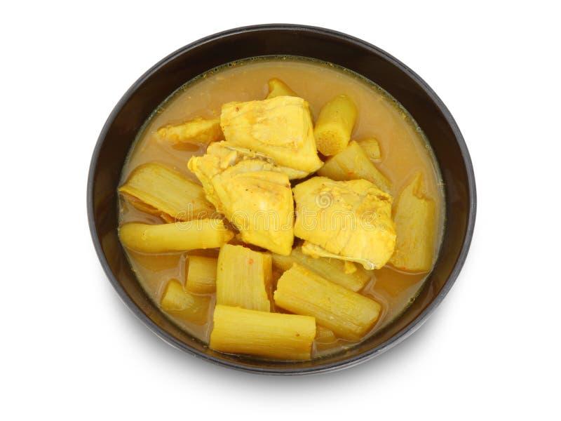 Soupe aigre chaude jaune avec les poissons et le légume photographie stock libre de droits