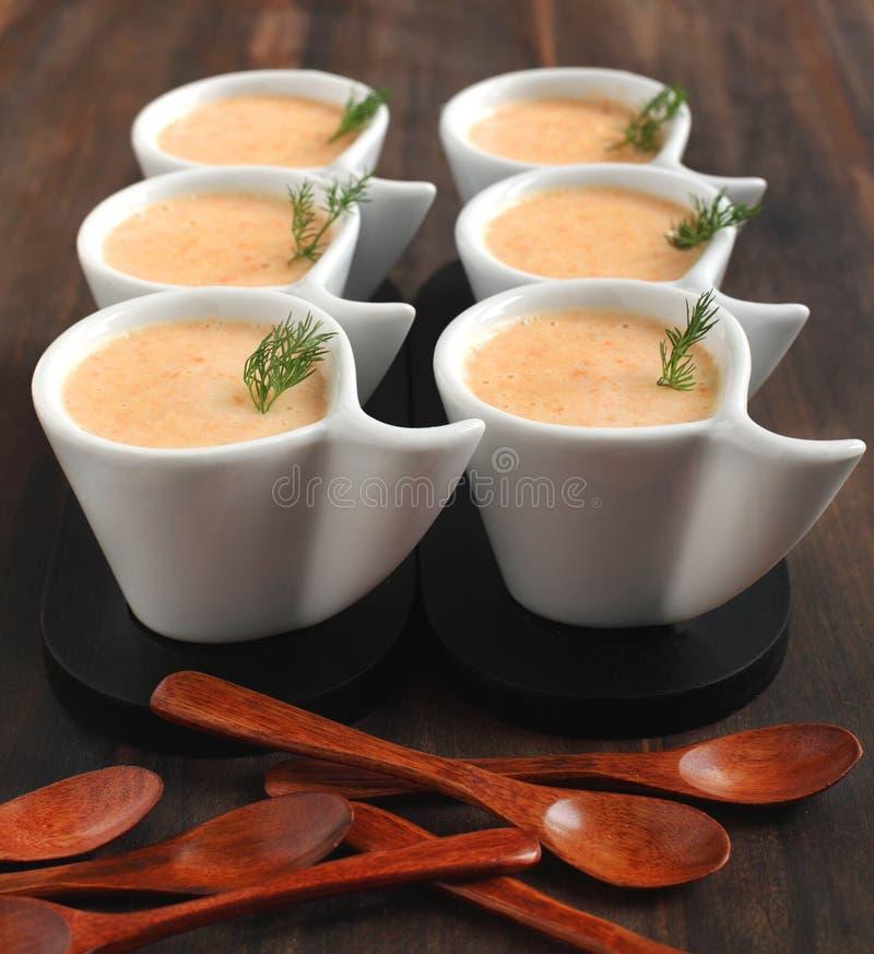 soupe crème à Raccord en caoutchouc-pomme de terre photo stock