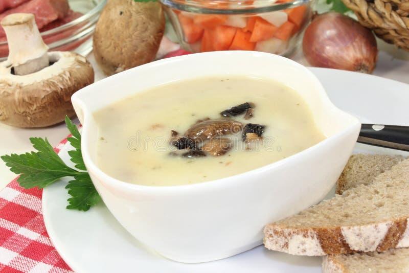 Soupe crème à veau photo stock