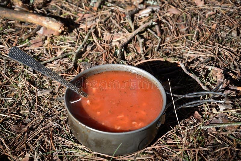 Download Soupe dans la forêt photo stock. Image du amis, outside - 77154954