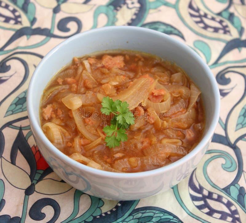 Soupe des oignons image libre de droits