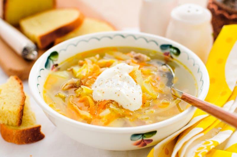 Soupe fraîche russe à chou, Shchi (Stchi) images libres de droits