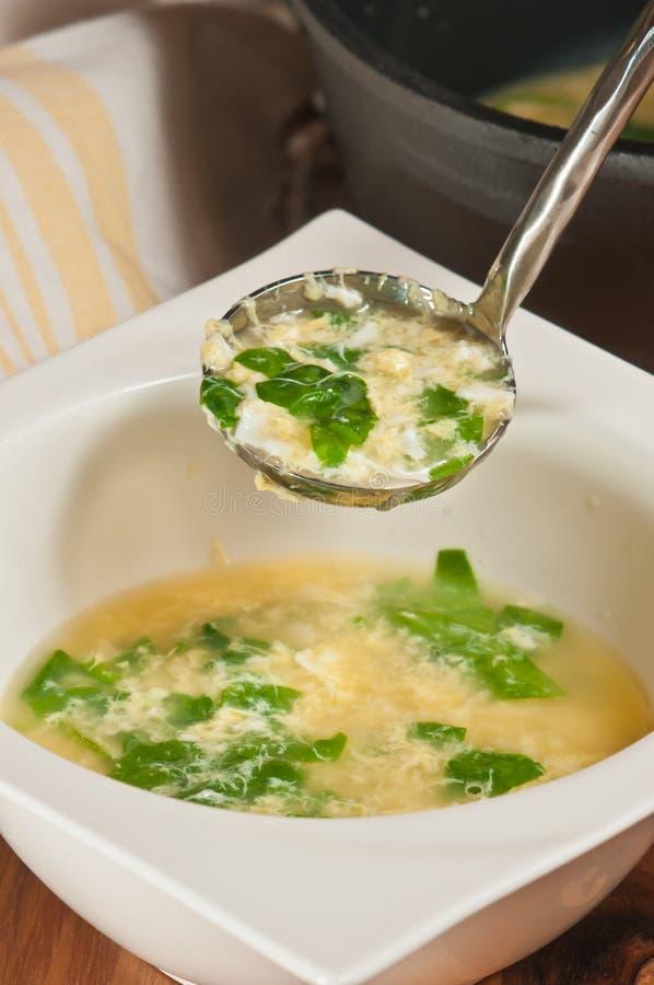 Soupe nouvellement préparée et faite maison à oeufs brouillés avec le spiniach photos libres de droits