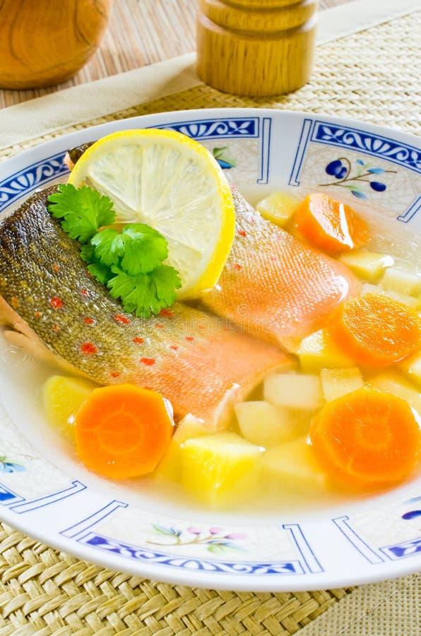 Soupe russe traditionnelle à poissons photos libres de droits