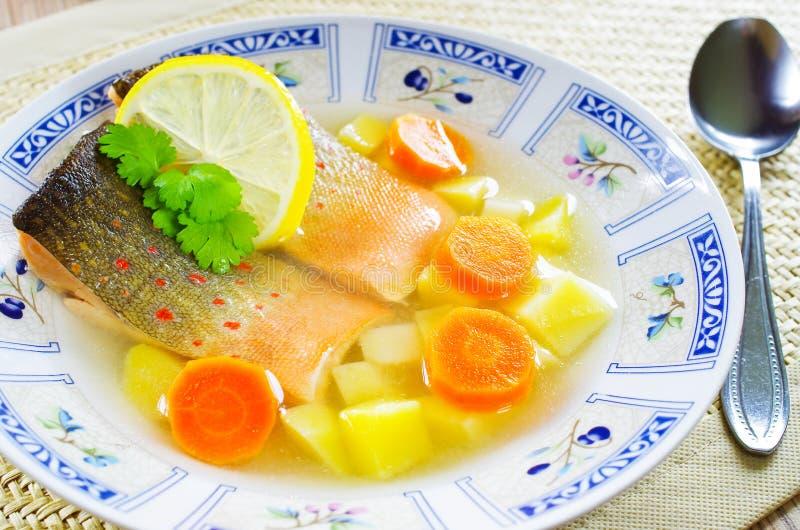 Soupe russe traditionnelle à poissons photo libre de droits