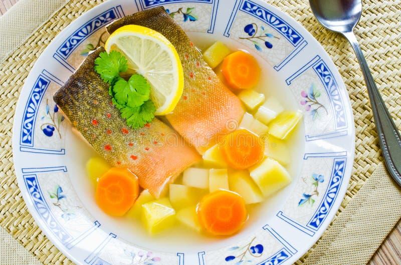 Soupe russe traditionnelle à poissons photographie stock libre de droits