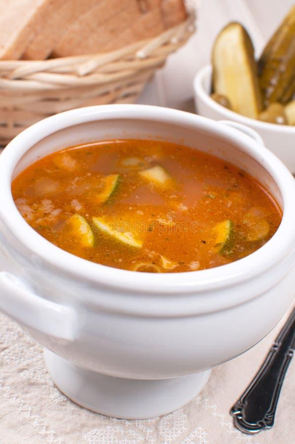 Soupe russe traditionnelle avec des conserves au vinaigre images stock