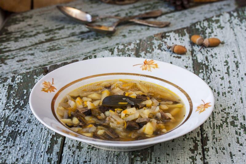 Soupe russe traditionnelle shchi à chou avec des champignons photo libre de droits