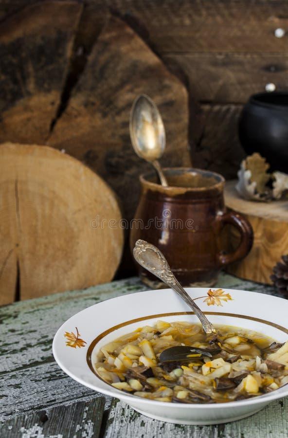 Soupe russe traditionnelle shchi à chou avec des champignons images stock