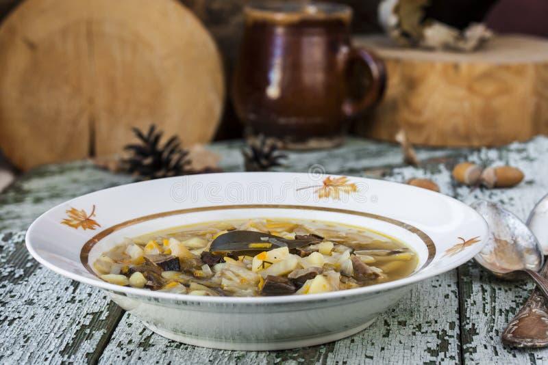 Soupe russe traditionnelle shchi à chou avec des champignons photographie stock libre de droits
