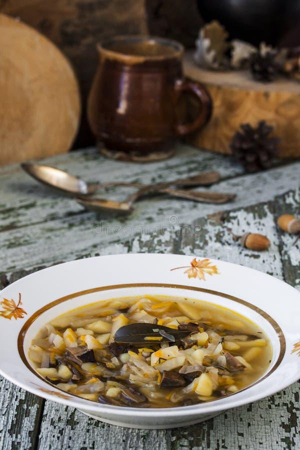 Soupe russe traditionnelle shchi à chou avec des champignons image stock