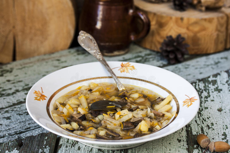 Soupe russe traditionnelle shchi à chou avec des champignons image libre de droits