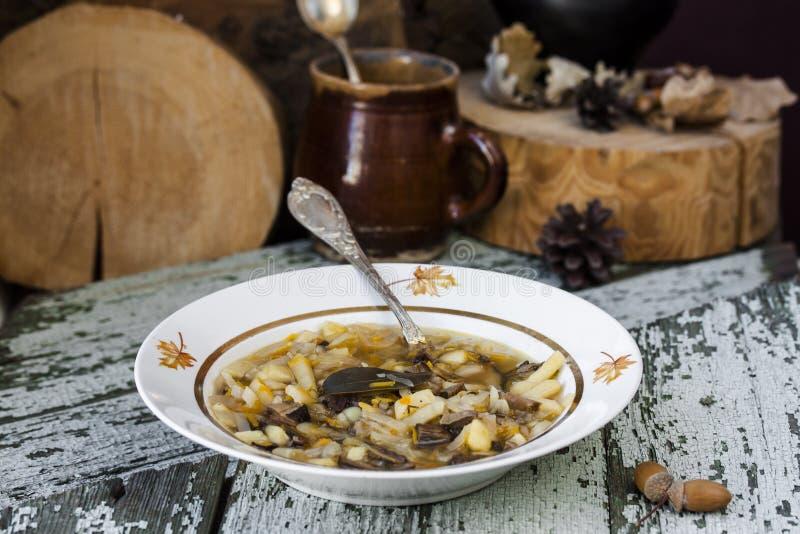 Soupe russe traditionnelle shchi à chou avec des champignons photo stock