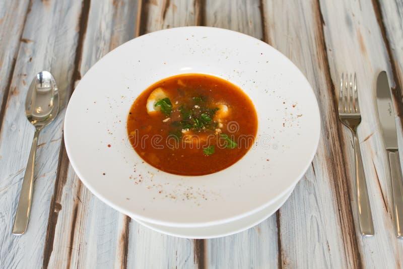 Soupe ukrainienne ou russe à borscht photo stock