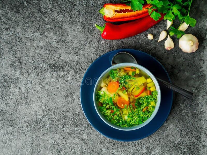 Soupe végétarienne diététique végétale à ressort sain, concentré foncé gris image libre de droits