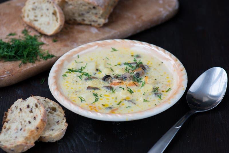 Soupe végétarienne faite maison à crème de champignon photos stock