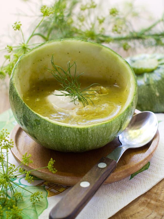 soupzucchini royaltyfri fotografi