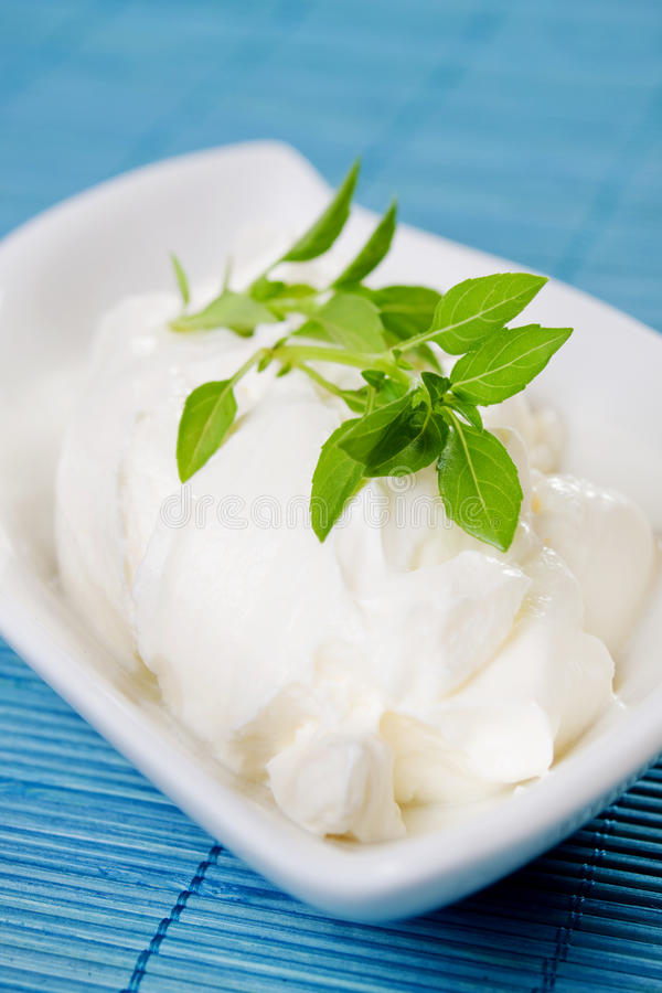 Sour cream with basil leaves stock images